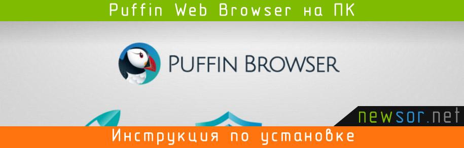 Puffin web browser скачать бесплатно на компьютер windows 7, 8, 10.